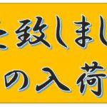 売れっ子起業家沖縄
